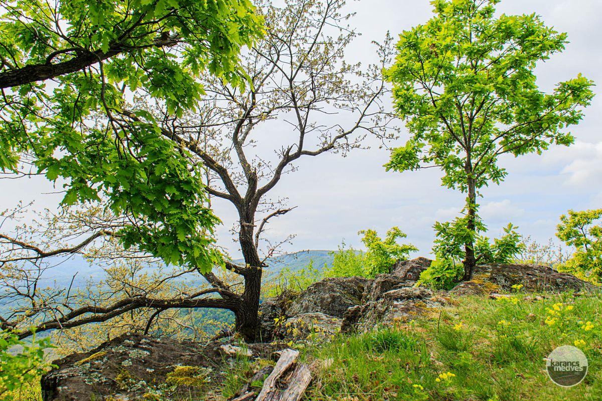 Pogányvári látkép (karancs-medves.info fotó: Micsuda András)