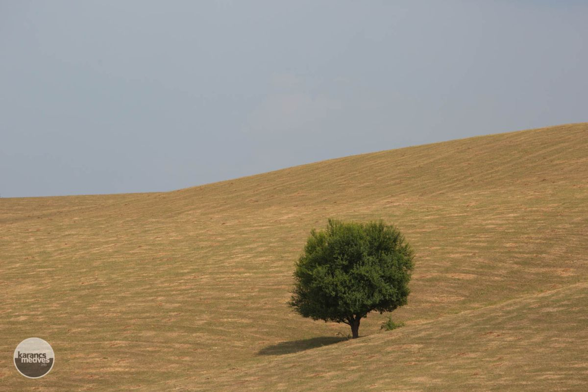 Nógrádszakáli látkép (karancs-medves.info fotó: Drexler Szilárd)