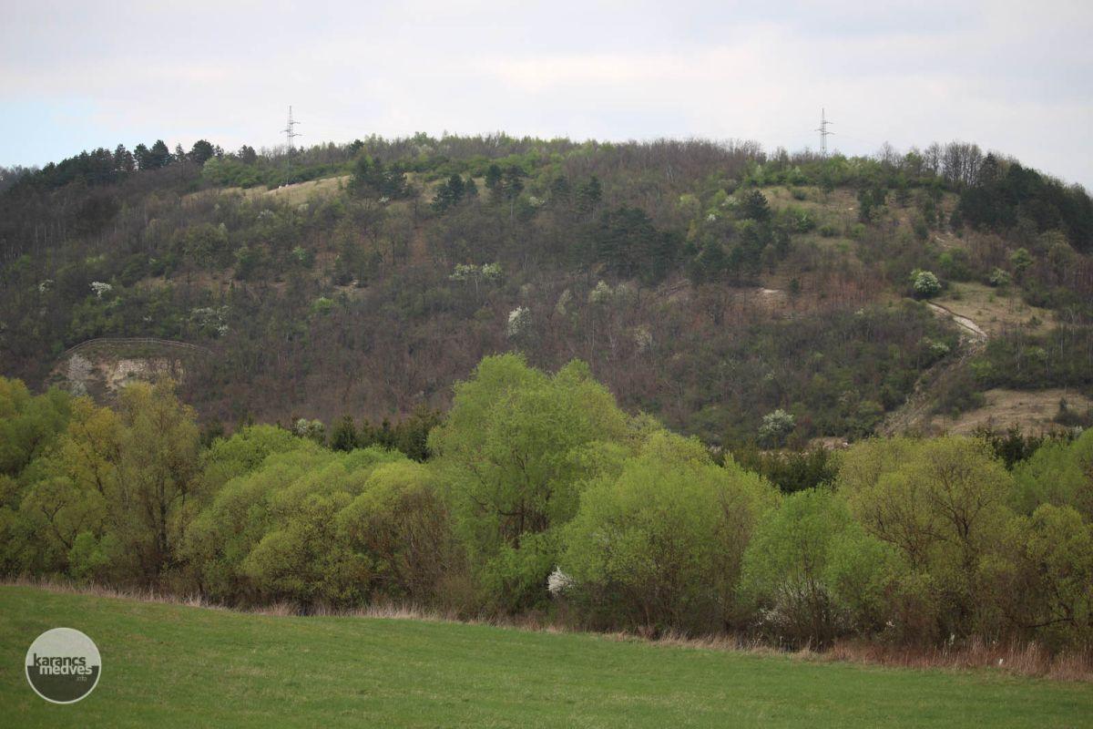 Buda-hegy (karancs-medves.info fotó: Kéri István)