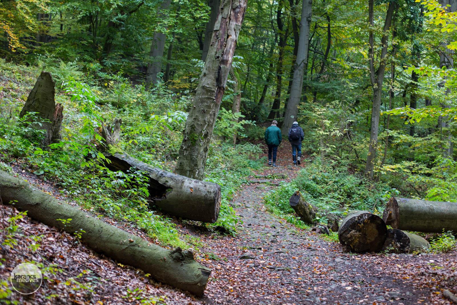 A környék kedvelt a túrázók körében (karancs-medves.info fotó: Drexler Szilárd)