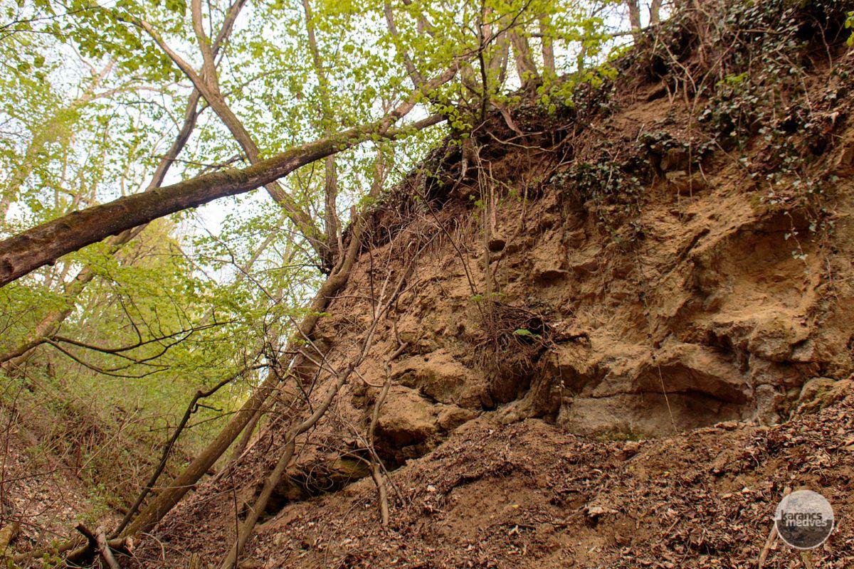 A Csontos-árok (karancs-medves.info fotó: Micsuda András)