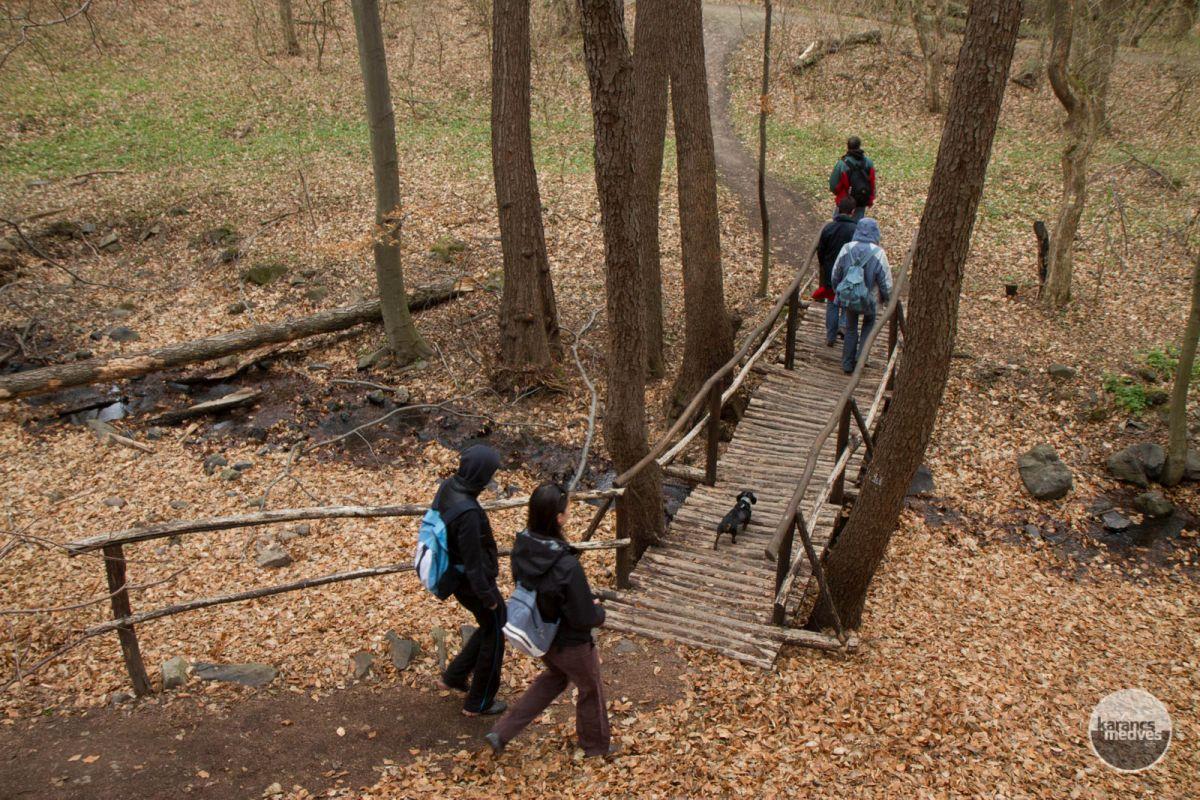 Kiemelt fotó: Túrázók a Sátormeg-patak völgyénél (karancs-medves.info fotó: Drexler Szilárd)