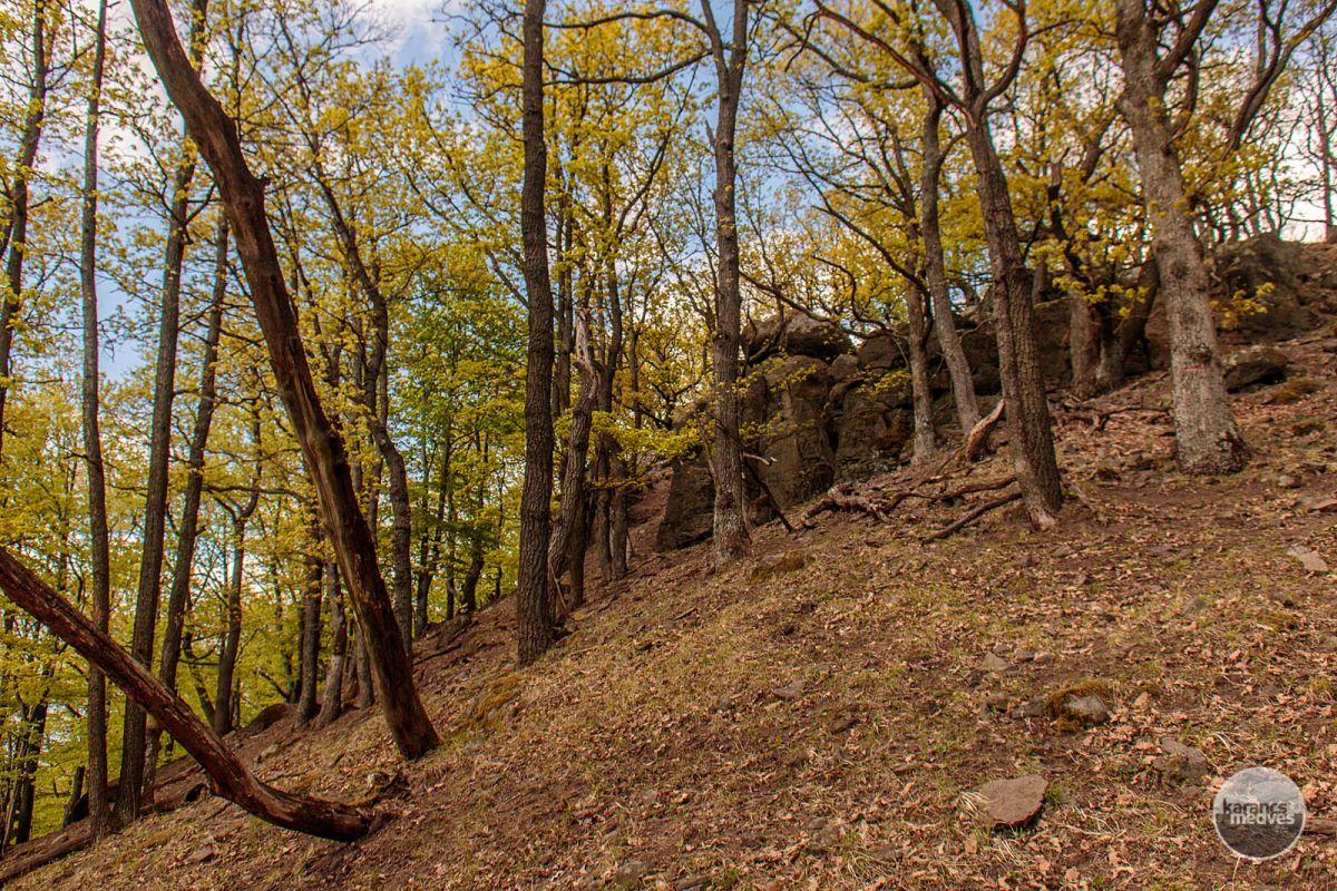 Kiemelt fotó: Zaboda-kő (karancs-medves.info fotó: Micsuda András)