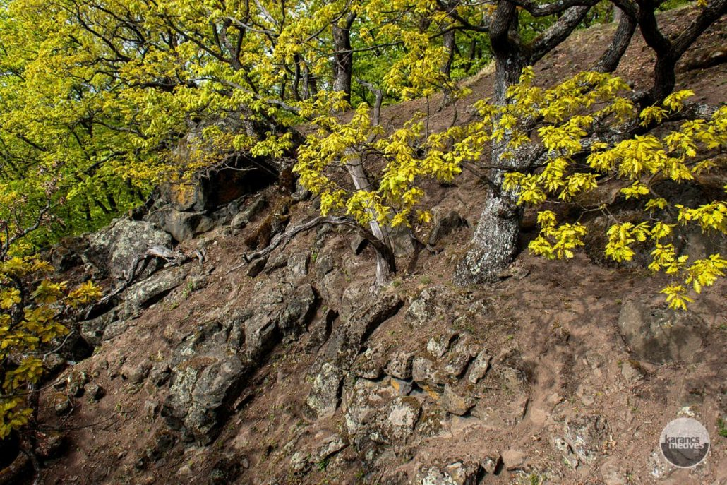 Zaboda-kő (karancs-medves.info fotó: Micsuda András)