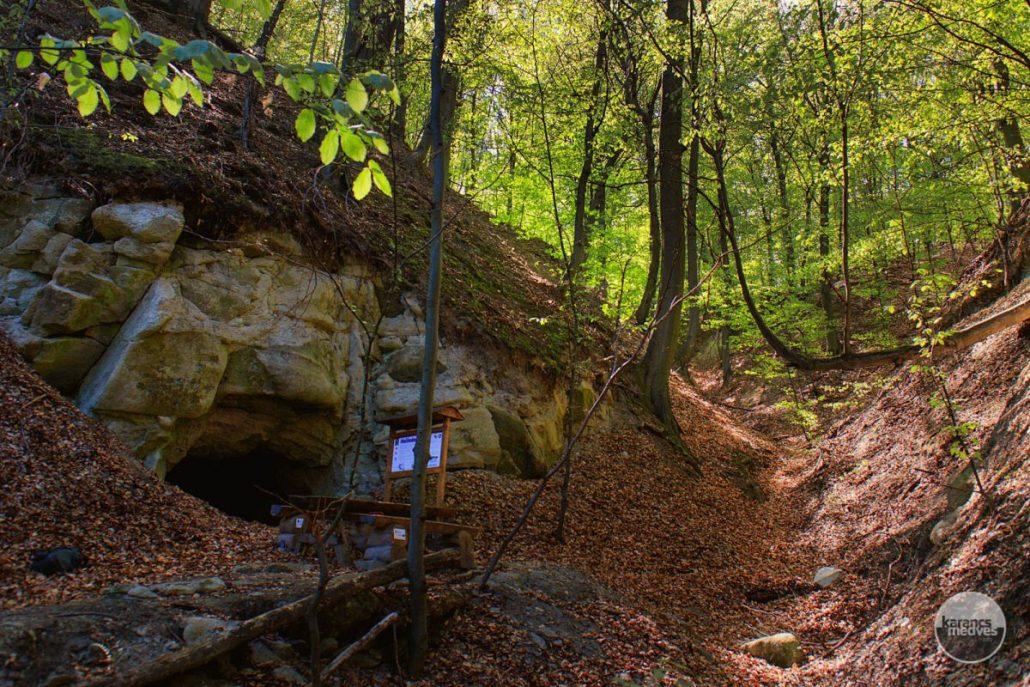 A Mucsényi-barlang (karancs-medves.info fotó: Micsuda András)