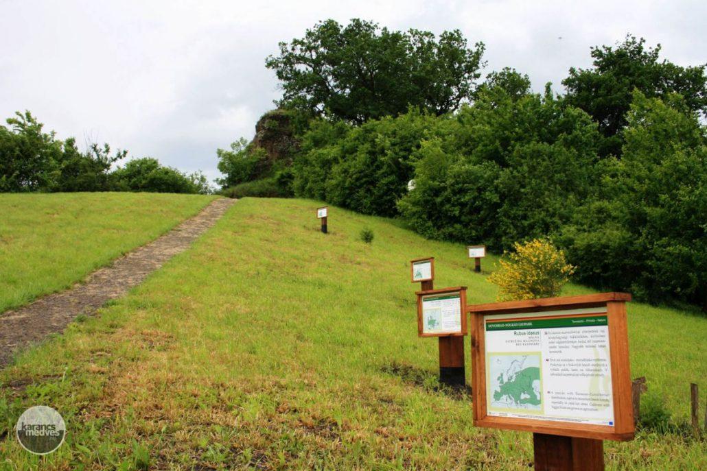 Számos információs tábla segíti a terület megismerését (karancs-medves.info fotó: Kéri István)