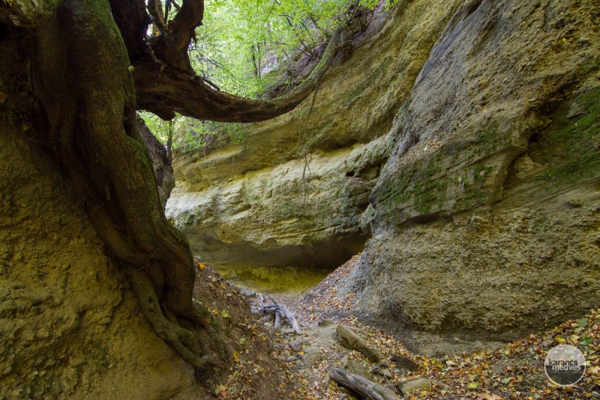 Kiemelt fotó: A Páris-patak völgye (karancs-medves.info fotó: Drexler Szilárd)