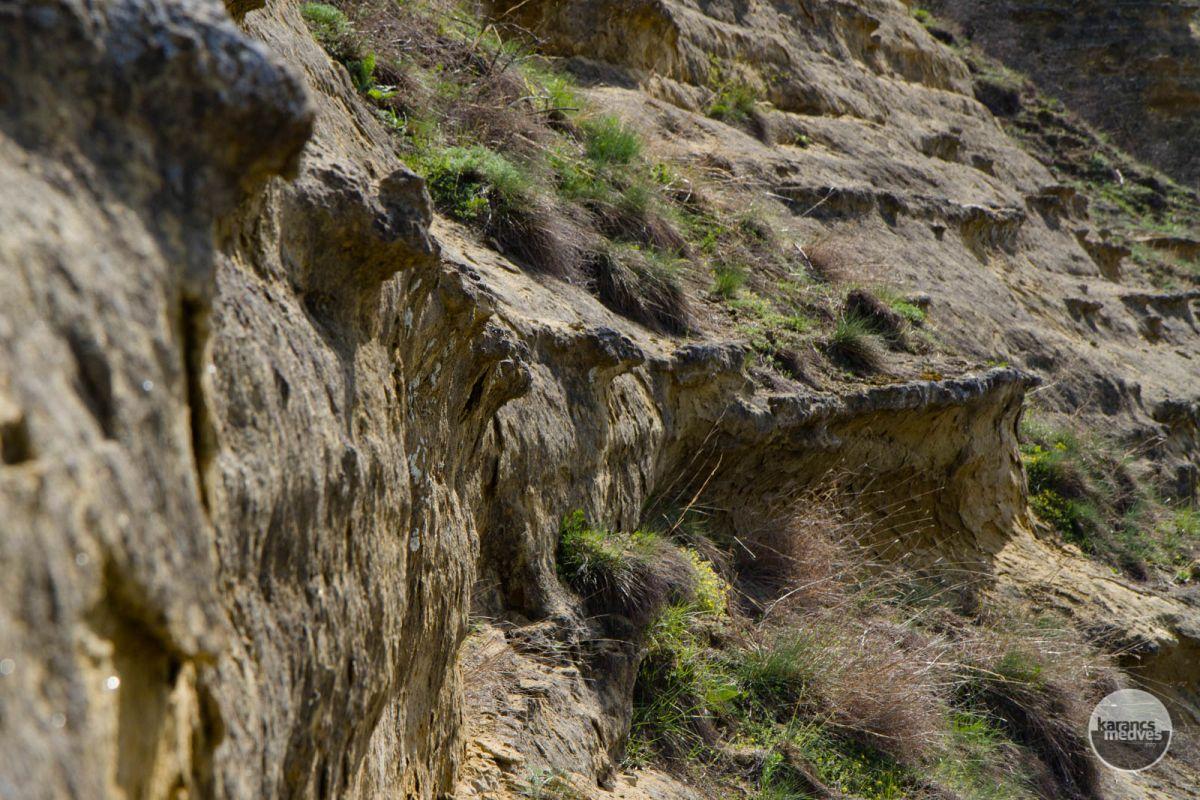 Kiemelt fotó: A kishartyáni Kőlyuk-oldal (karancs-medves.info fotó: Drexler Szilárd)