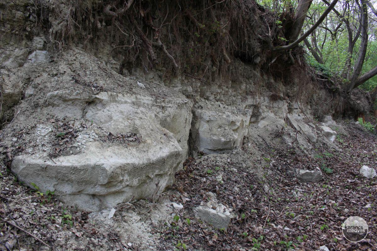 Kiemelt fotó: A Kozárdi Formáció (karancs-medves.info fotó: Kéri István)