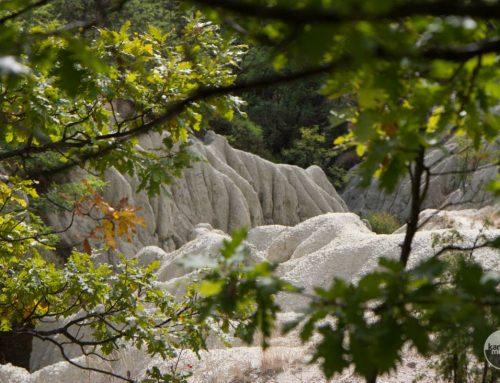 Holdbéli táj: a kazári riolittufa-eróziós felszín