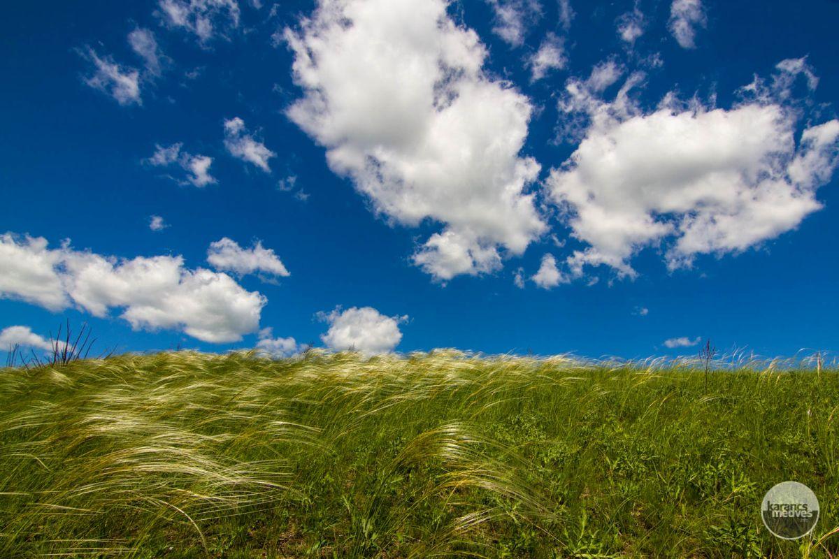 Kiemelt fotó: Béri lankák (karancs-medves.info fotó: Drexler Szilárd)