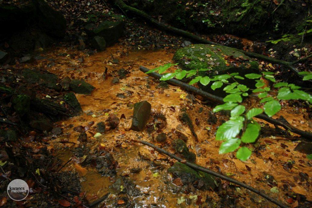 A Gortva-patak (karancs-medves.info fotó: Kéri István)