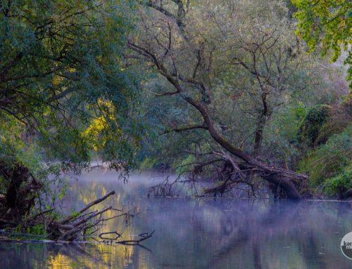 Az Ipoly-völgy és az Ipoly folyó