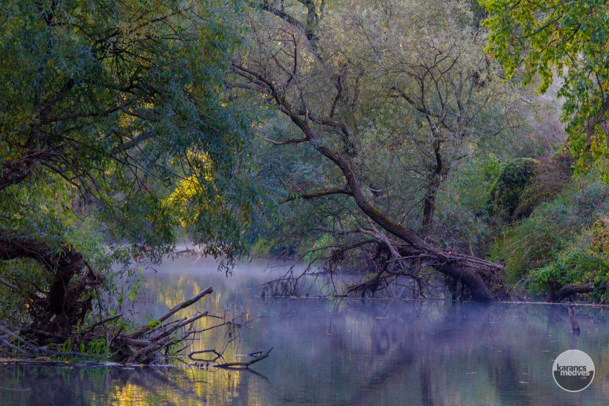 Kiemelt fotó: Fák az Ipoly felett (karancs-medves.info fotó: Drexler Szilárd)
