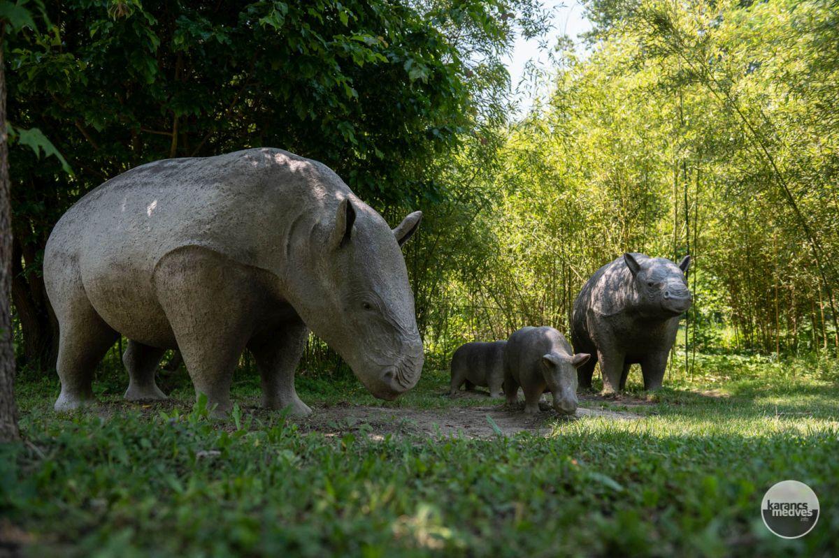 Az Ősmaradványok őslényei (karancs-medves.info fotó: Komka Péter)