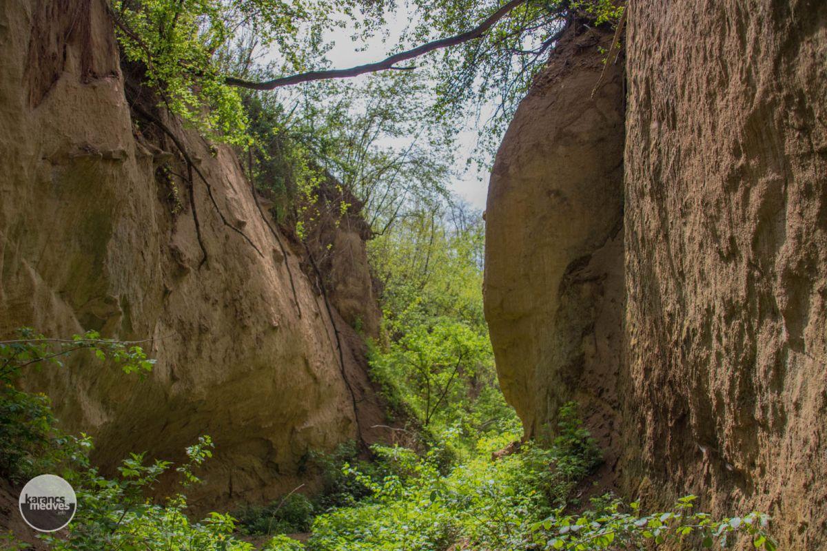 Morgó-gödör (karancs-medves.info fotó: Pozsik Gábor)