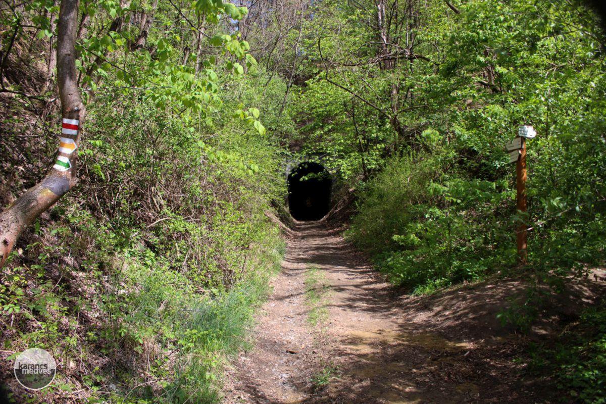 Az egykori kőszállító kisvasút alagútja Somoskőújfalu közelében (karancs-medves.info fotó: Kéri István)